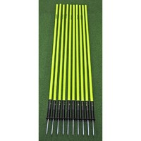 OAS Set of 10 Agility Slalom Pole with Spring Base - 176cm + FREE Carry Bag