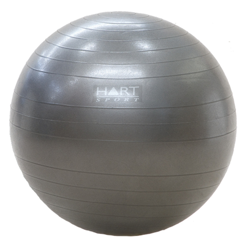 Anti Burst Swiss Ball 55cm (Rated 227kg)